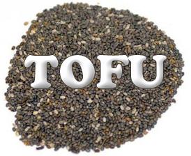 Tofu chia seemnetega
